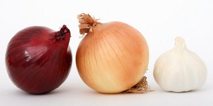 Czosnek i dwie cebule
